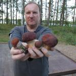 Jeśli trafimy na sezon grzybowy - zaskoczy nas obfitość zbiorów